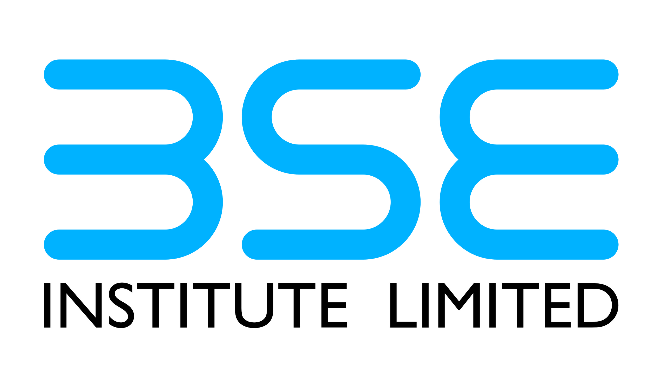 BSE Institute to financially literate the backward villages in Maharashtra